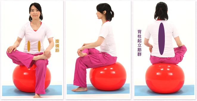 胴体部分の筋肉全体が鍛えられ姿勢の矯正につながります。下半身のむくみの改善が期待でき、股関節周りの柔軟性も養う