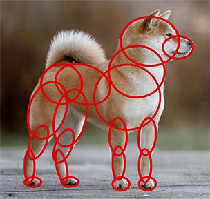 犬の描き方(横向き)