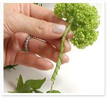 茎が柔らかいので、葉を落とし、ワイヤーを巻いて補強しましょう。ワイヤーを花の根元に通して半分に折り曲げ、折り曲げた片方を茎に添わせ、もう片方のワイヤーを巻きつけます。