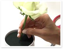 トップ(一番高い位置にくる花)の茎の長さは、器の高さ+3㎝ほどを目安にカットします。