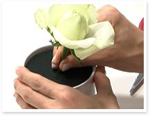 メインのバラは一番高くなるポイントに挿しましょう。この時、吸水スポンジに3㎝程度入っていると、水を良く吸い持ちが良くなります。