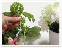 サブ花材2のスノーボールを隙間に挿していきます。茎の長さは、トップに挿した花よりやや短く、バランスを見ながらカットします。