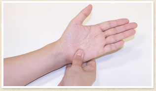 手の平の小指側の一番下のあたりに親指を当てて掴む