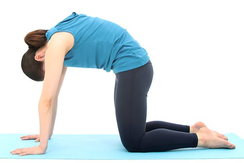続けて尾骨を床に向けながら、背骨全体を波打つように動かしていきます。