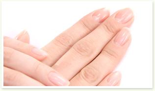 爪の長さと形を整えていきましょう