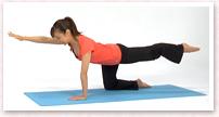 吸って、吐きながら、肩甲骨を安定させニュートラルポジションを維持しながら、対角線の手と足を骨盤の高さまで上げ5秒間キープ