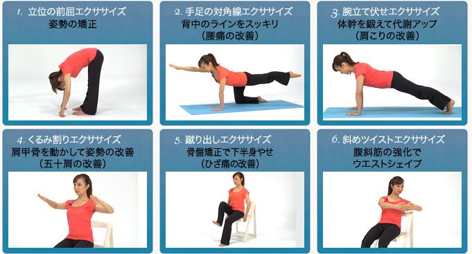 準備 呼吸法 1.立位の前屈エクササイズ 2.手足の対角線エクササイズ 4.腕立て伏せエクササイズ  5.くるみ割りエクササイズ 6.蹴り出しエクササイズ 7.斜めツイストエクササイズ