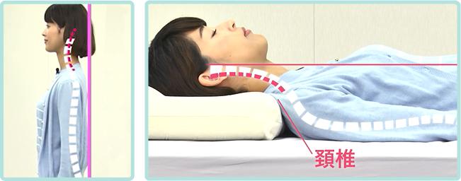 寝起きに肩こりや疲れを感じるのは、寝姿勢が悪いから