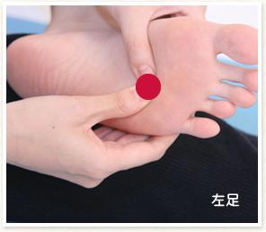 心臓の反射区
