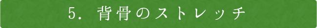 5.背骨のストレッチ