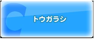 C:トウガラシ